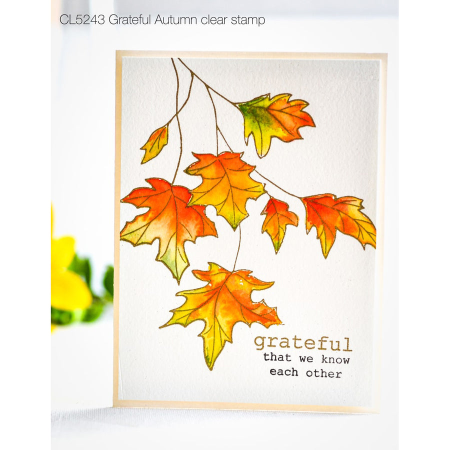 Memory Box - Grateful Autumn Clear Stamp Set - CL5243