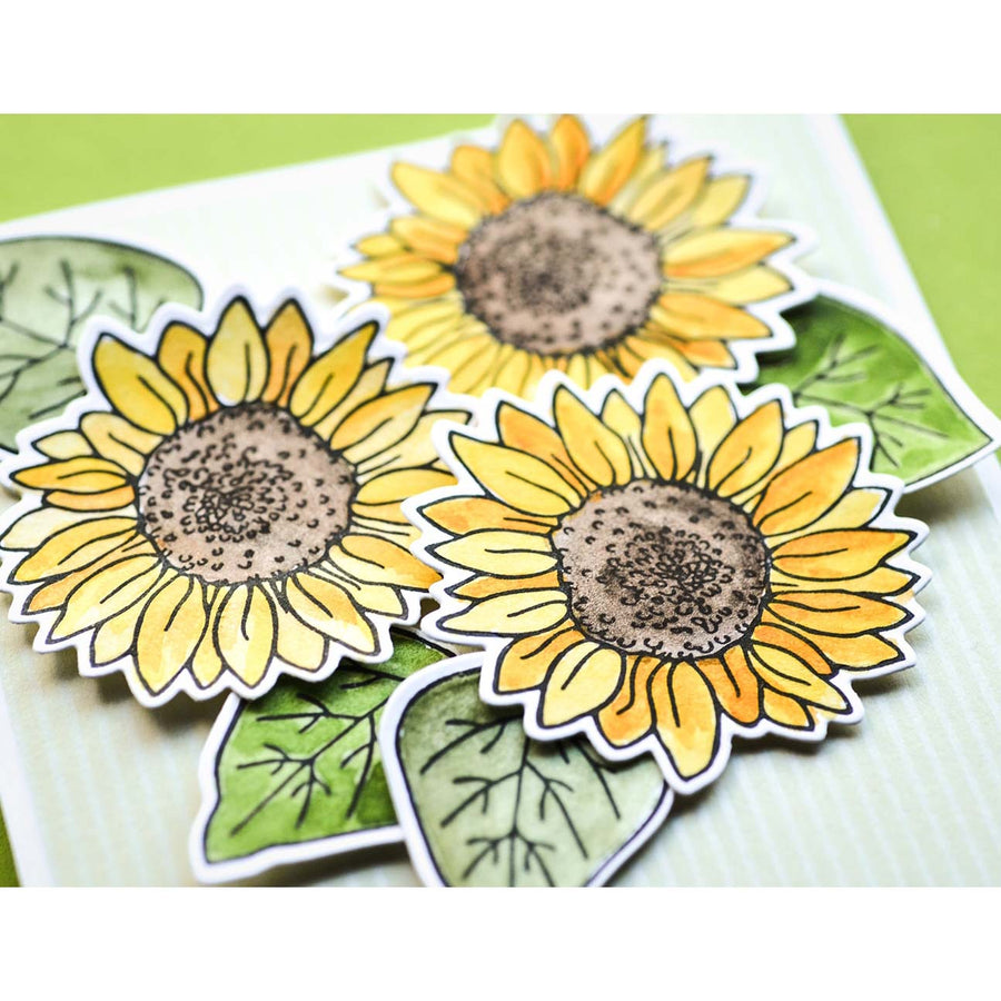Memory Box Stamp & Die Set - Sunflower Wreath - CL5253-D