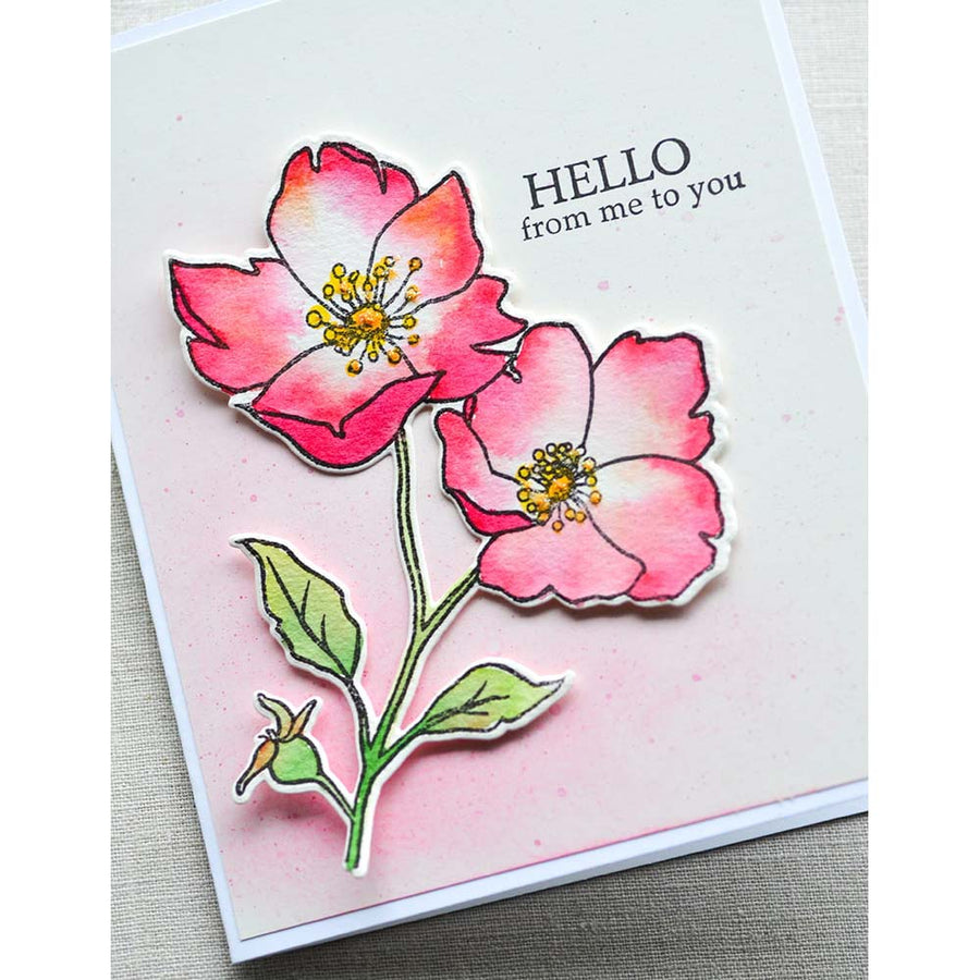 Memory Box Stamp & Die Set - Wild Rose Stem - CL5258-D