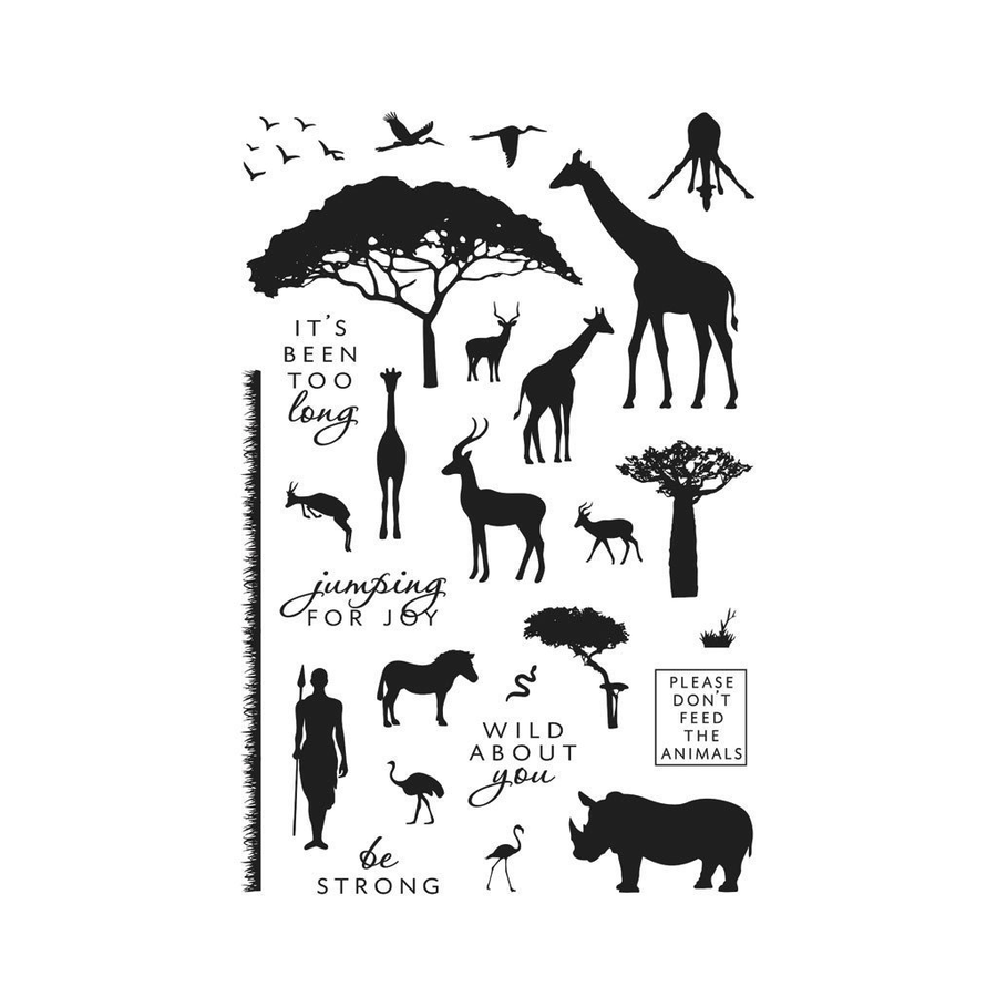 Hero Arts Stamp - Safari Wild About You