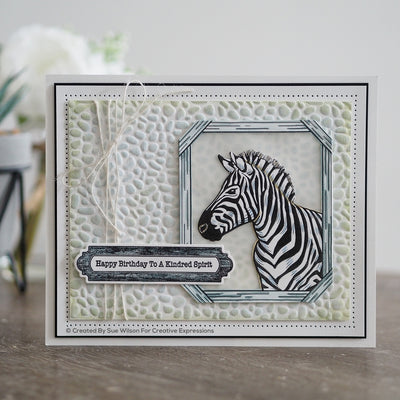 Creative Expressions A5 Clear Stamp Set - Zebra - UMS905