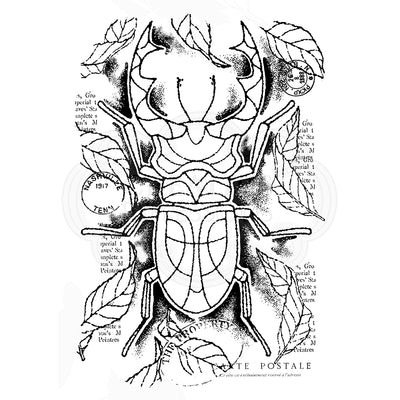 Woodware Clear Singles - Stag Beetle - FRS807