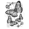 Woodware Clear Singles - Three Butterflies - FRS829