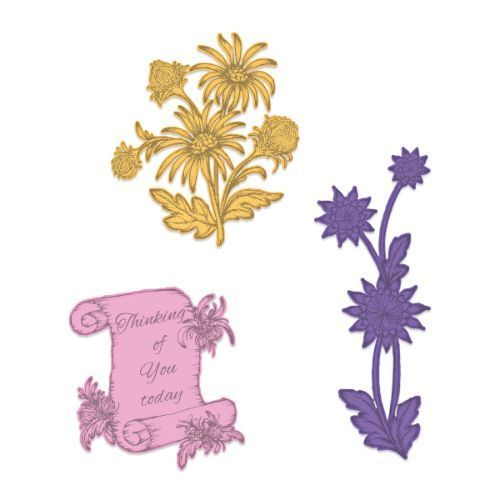 Heartfelt Creations - Wild Aster Scroll & Cluster Die - HCD1-7259