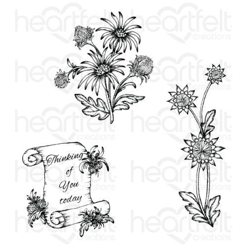 Heartfelt Creations - Wild Aster Scroll & Cluster Cling Stamp Set - HCPC-3889