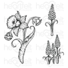 Heartfelt Creations - Delightful Daffodil & Hyacinth Stamp Set - HCPC-3944
