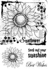 Woodware Clear Singles - Sunflower Sketch - JGB004