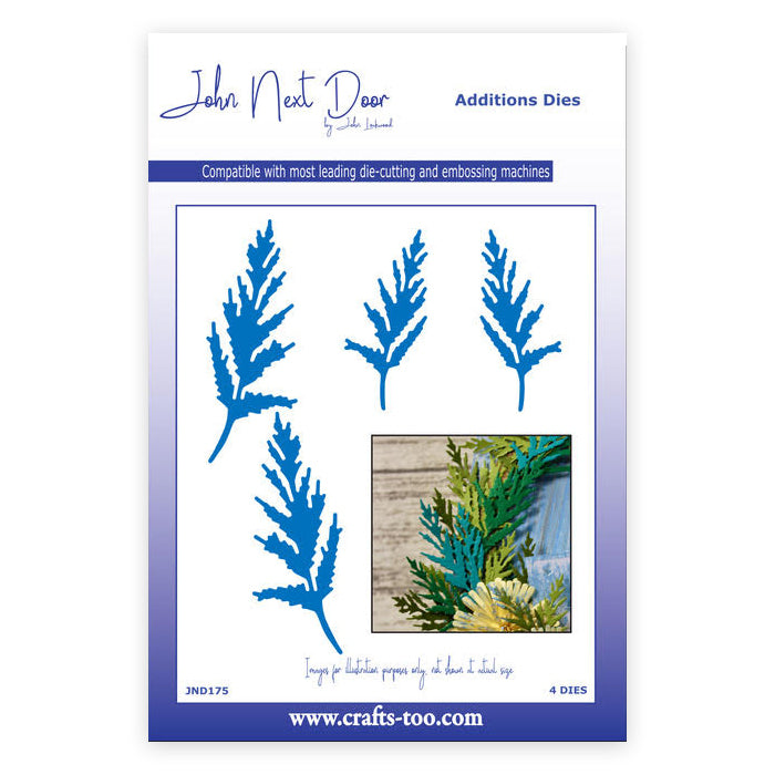 John Next Door Dies - Aster Leaves - JND175