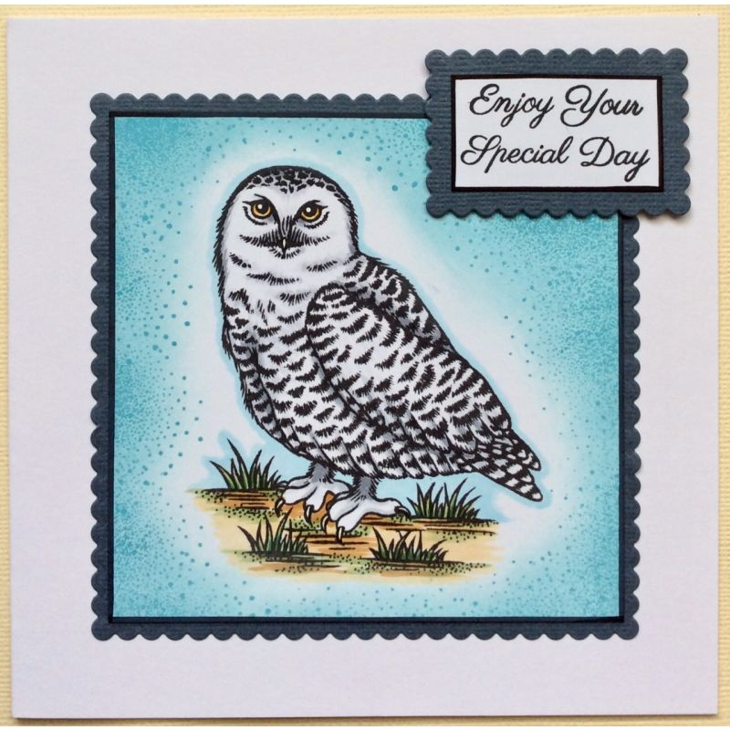 Sweet Dixie Stamps - Snowy Owl and Barn Owl