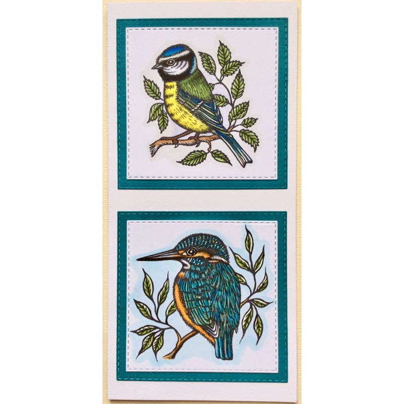 Sweet Dixie Stamps - Kingfisher and Blue Tit