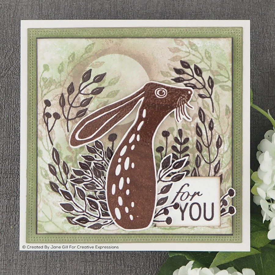 Woodware Clear Stamps Hare In The Middle - JGS699