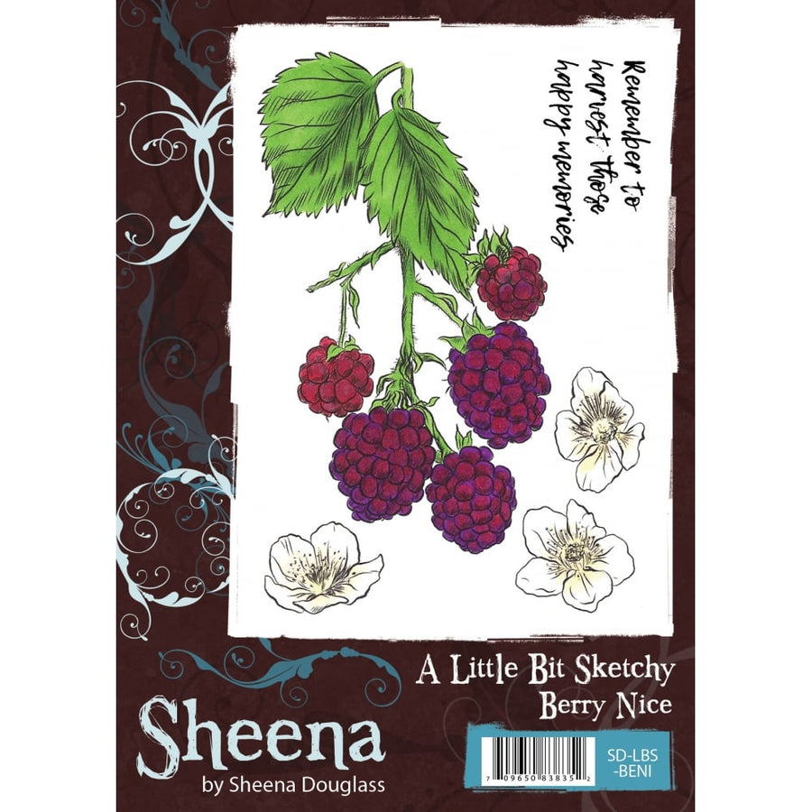 Sheena Douglass A Little Bit Sketchy A6 Unmounted Rubber Stamp - Berry Nice