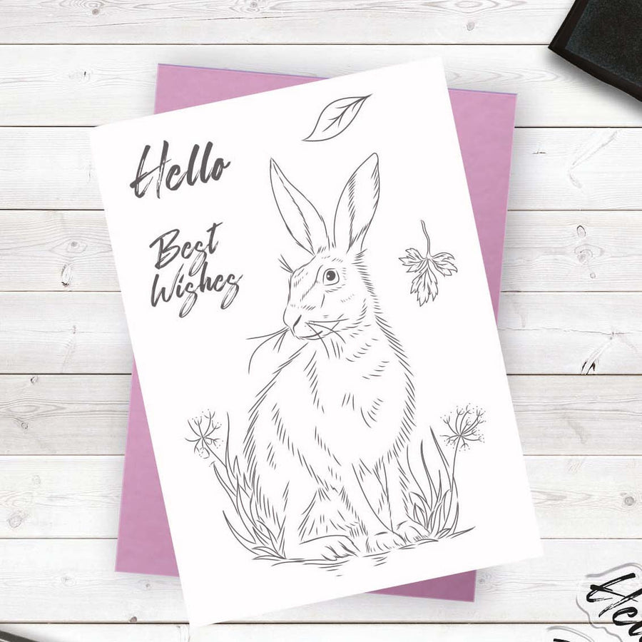 Crafters Companion - Photopolymer Stamp - Meadow Hare