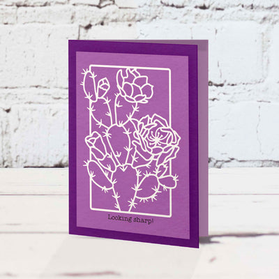 Gemini by Crafters Companion - Stamp & Die - Sweet Succulent
