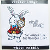 Visible Image Stamp - White Rabbit