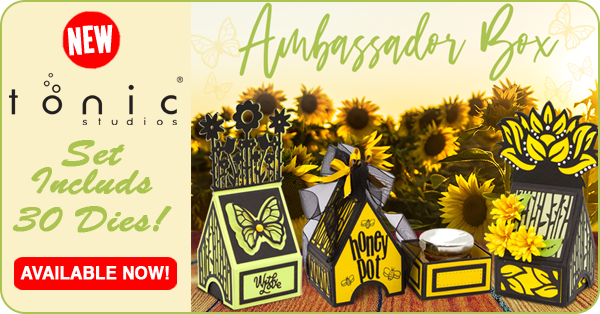 Tonic Ambassador Box