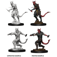 Dungeons & Dragons - Nolzur's Marvelous Unpainted Miniatures: Male Tiefling Rogue