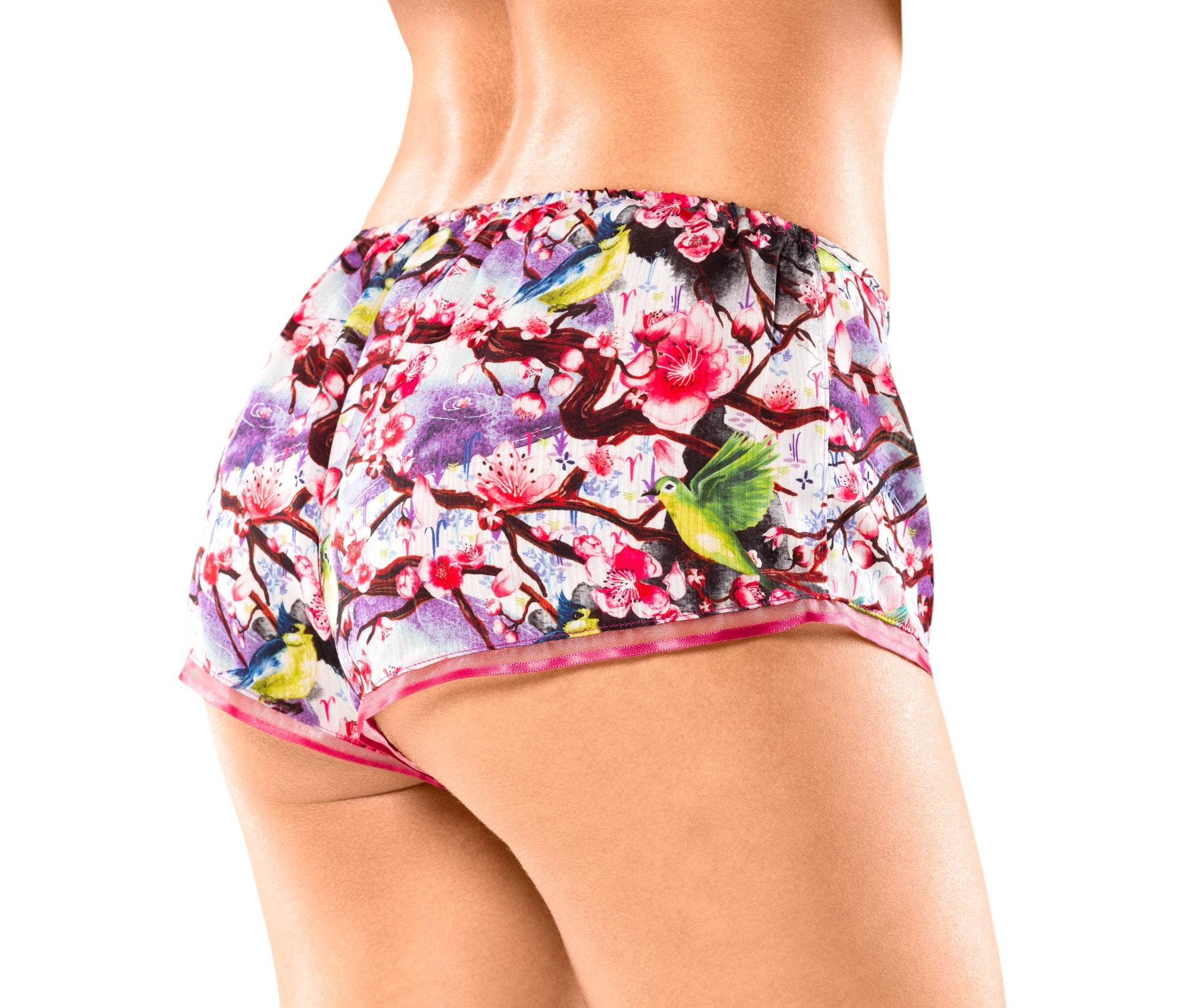 FUJI french knicker