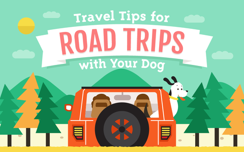 Traveling with Your Fur Baby