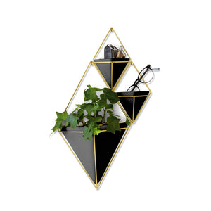 Trigg Small Wall Display Black