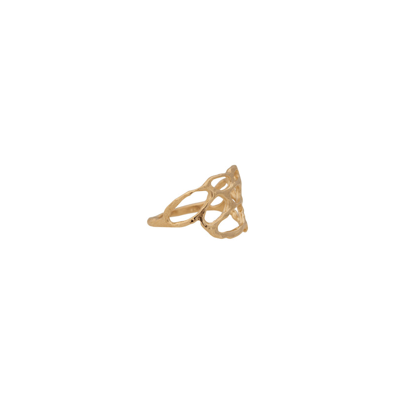 Lace ~ 14K Gold Small Ring - Alexandra Mosher Studio Jewellery Bermuda Fine