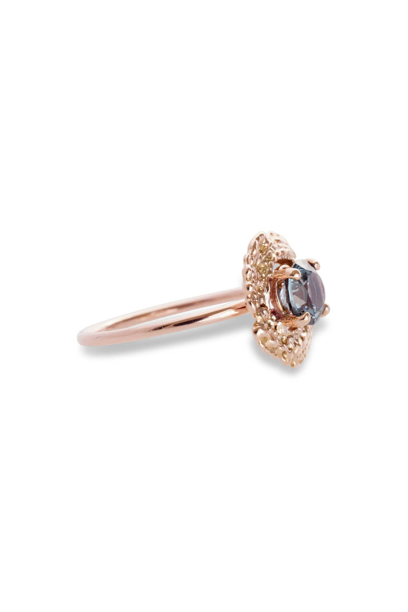 Bubble Shell Ring 14K Rose Gold - Alexandra Mosher Studio Jewellery Bermuda Fine