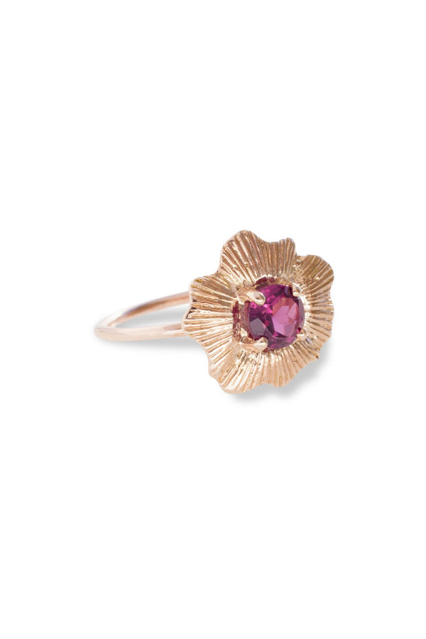 Round Starburst Shell Ring 14K Rose Gold
