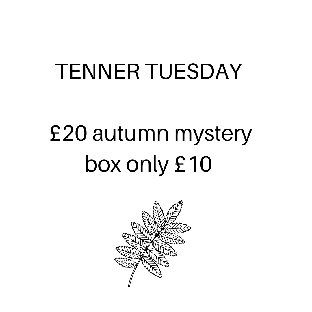 Tenner Tuesday autumn box