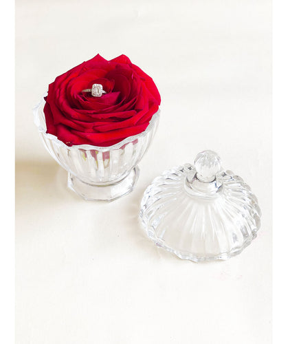 Eternity Rose in Glass Jar