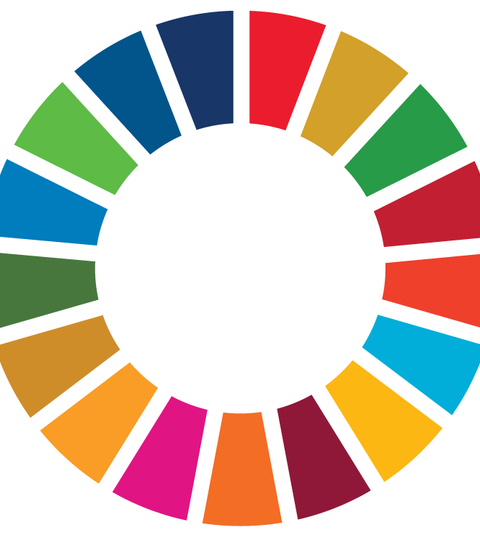 The United Nations Sustainable Development Goals (Materials and methods supports these goals.)