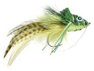 Beginner S Guide For Bass Fly Fishing Andy Thornal Company