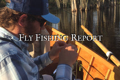 Central Florida Fly Fishing Report