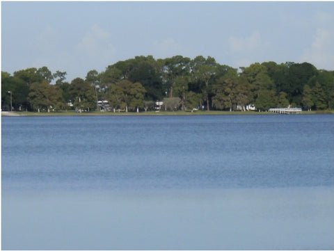 Lake Shipp for Winter Haven Fly Fishing