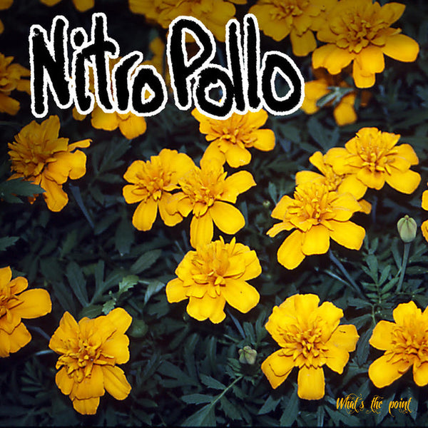 NitroPollo - What's The Point