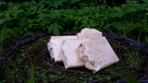 Clothed in The Sun Goat's Milk Soap