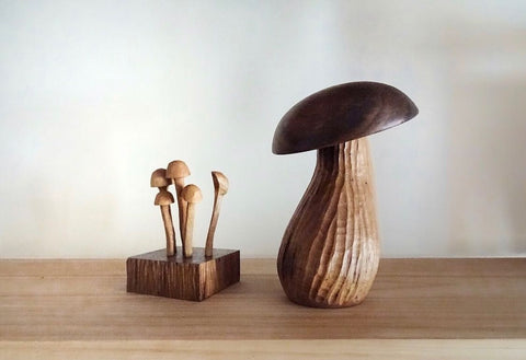 Opus Lab Mushroom Salt Cellar & Spoon