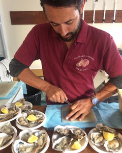 Wooden Handled Oyster Knife opening oysters. Oyster knives available to buy through mail order at Richard Haward's Oysters