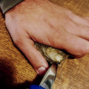 Square Handled Oyster Knife - Richard Haward's Oysters