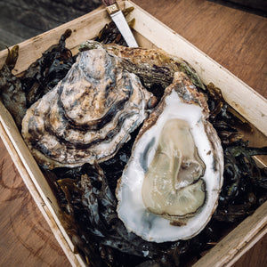 Large Rock Oyster - Richard Haward's Oysters