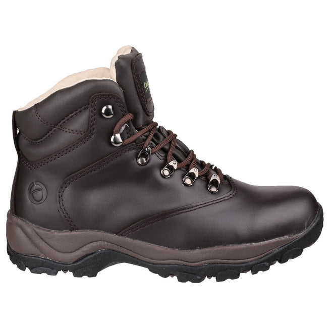 Brown - Back - Cotswold Adults Unisex Winstone Walking Boots