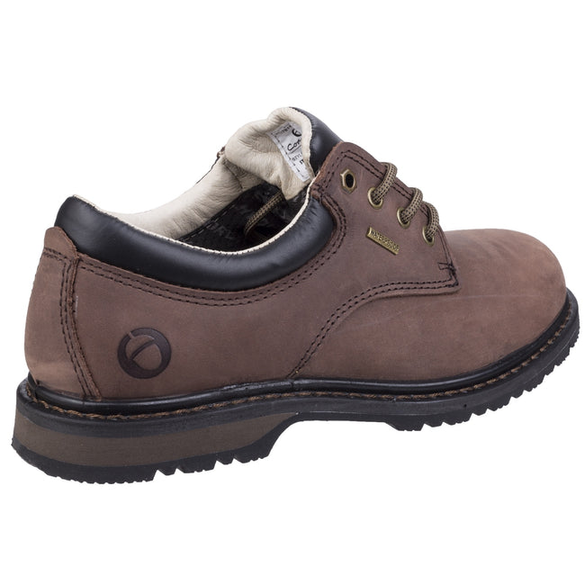 Crazyhorse - Back - Cotswold Mens Stonesfield Leather Hiking Shoe