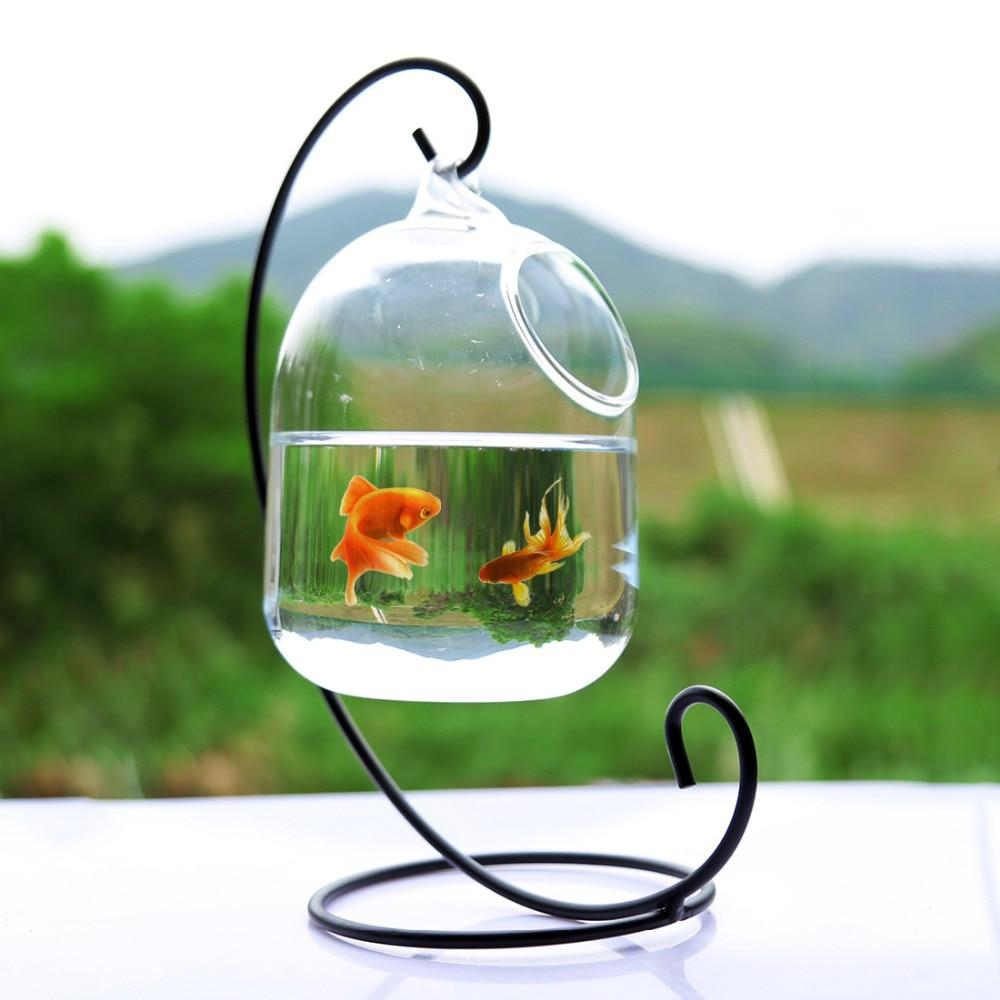 Hanging Glass Aquarium Fish