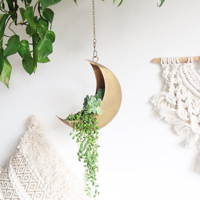 Hanging Celestial Gold Moon Planter - coppermoonboutique