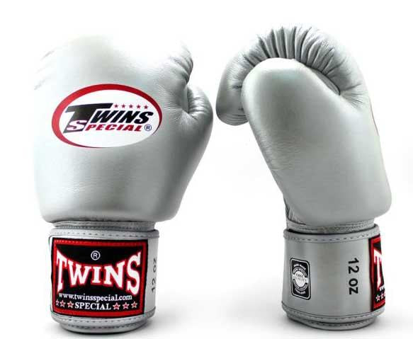 Silver Twins Boxing Gloves - Velcro Wrist