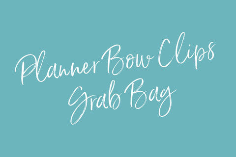 Planner Bow Clips Grab Bags