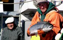 Wild Salmon Catch by John Constanti of Fairhaven Bay Seafoods