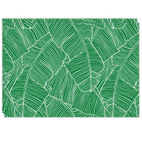 Rectangle Dailies® | Green Palm Fronds (2-Pack) - TingeDaily