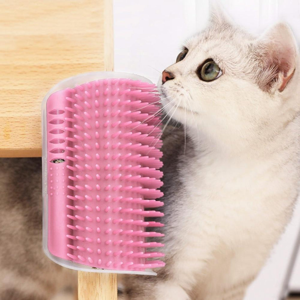 Corner Grooming Station For Cats