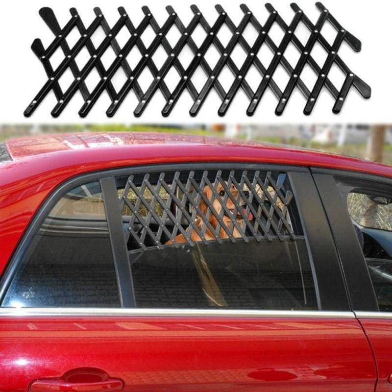 Car Window Safety For Pets - Dog