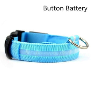 Led Pet Safety Collar - Battery Blue / Xs - Dog